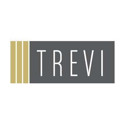 TREVI_logo6x6web